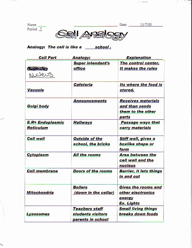 Cell organelles Worksheet Answers Luxury Cells and organelles Worksheet Answer Key