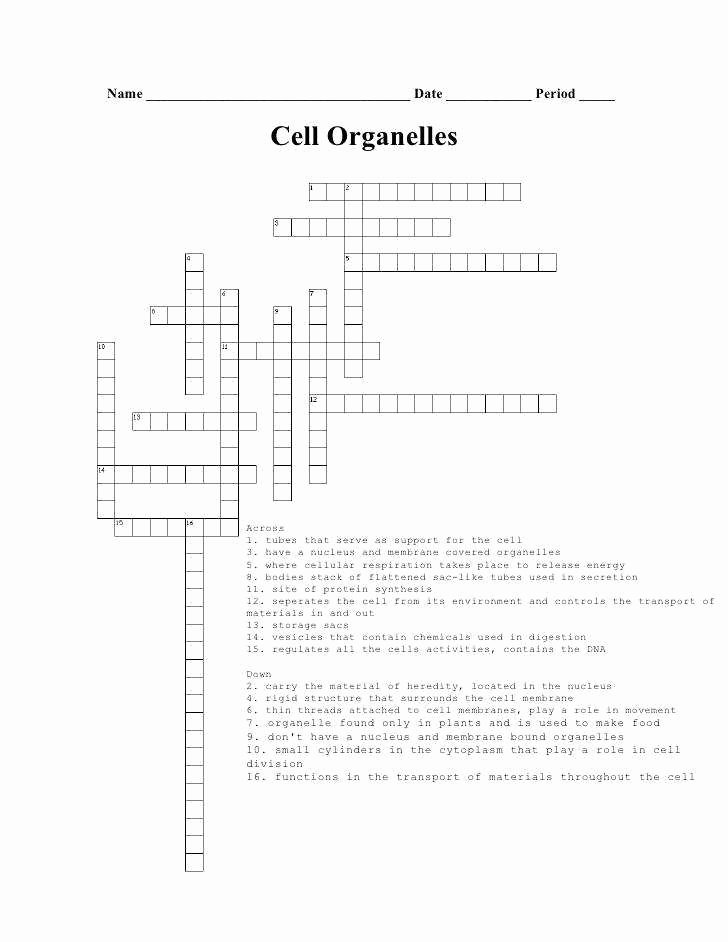 Cell organelles Worksheet Answers Unique Cell organelles Worksheet Answers