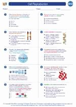 Cell Reproduction Worksheet Answers Fresh Cell Reproduction High School Biology Worksheets and