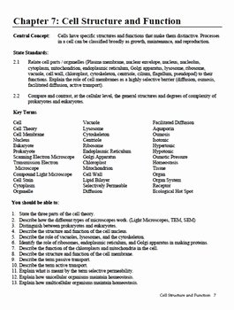Cell Structure and Function Worksheet Fresh Cell Structure and Function Review Worksheet Breadandhearth