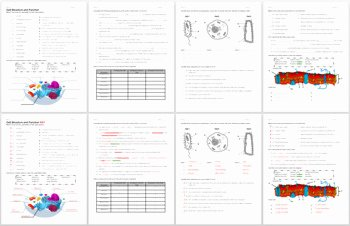 Cell Structure and Function Worksheet Fresh Cell Structure and Function Review Worksheet by Biology