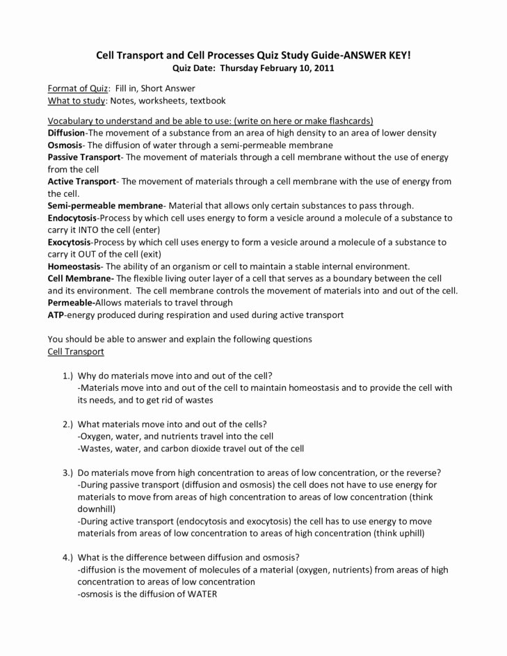 Cell Transport Review Worksheet Answers Elegant Cell Transport Worksheet Answers