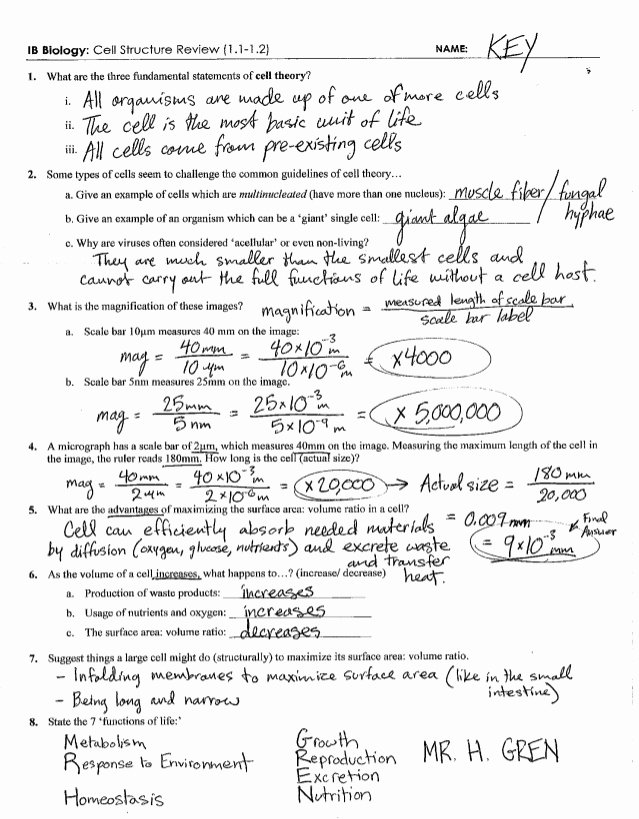 Cell Transport Review Worksheet Answers Inspirational Ib Cell Structure Review Key 1 1 1 2