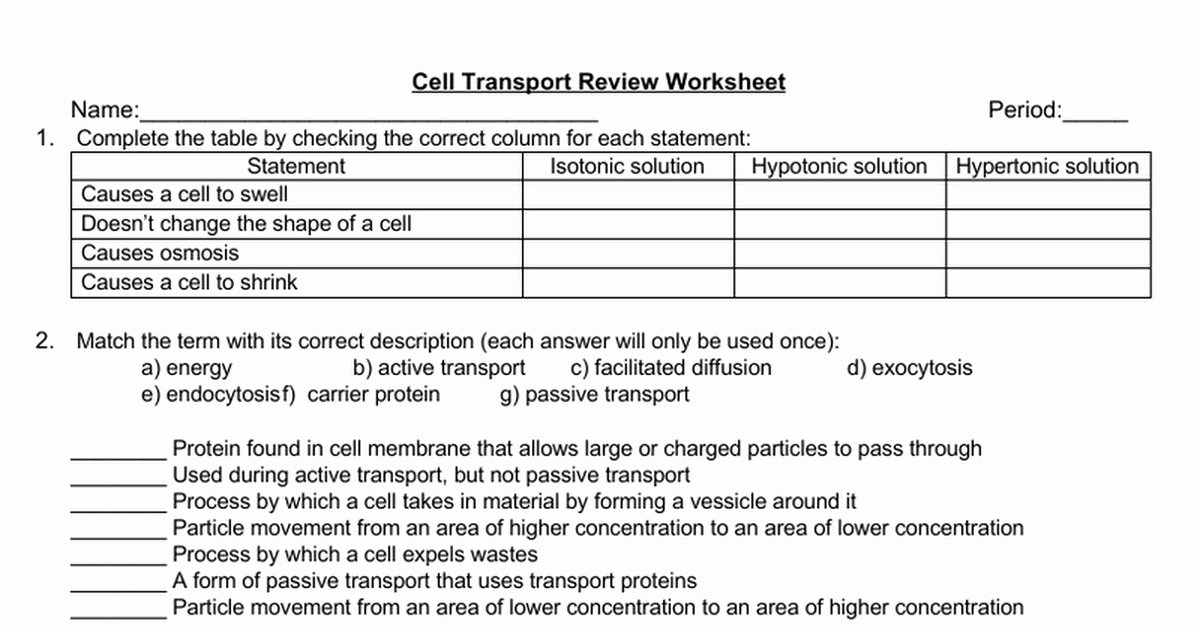 Cell Transport Review Worksheet Elegant Cell Transport Worksheet Answers