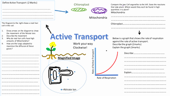 Cell Transport Review Worksheet New Active Transport Revision Sheet Mat Diffusion Revision