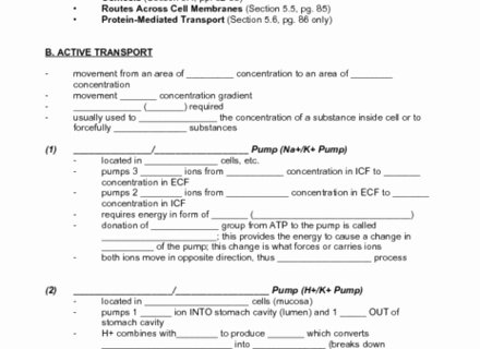 Cell Transport Worksheet Answers Beautiful 25 Best Ideas About Active and Passive Voice Pinterest