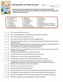 Cells and their organelles Worksheet Best Of Cell organelles Matching Worksheet