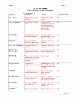 Cells and their organelles Worksheet Elegant Studylib Essys Homework Help Flashcards Research