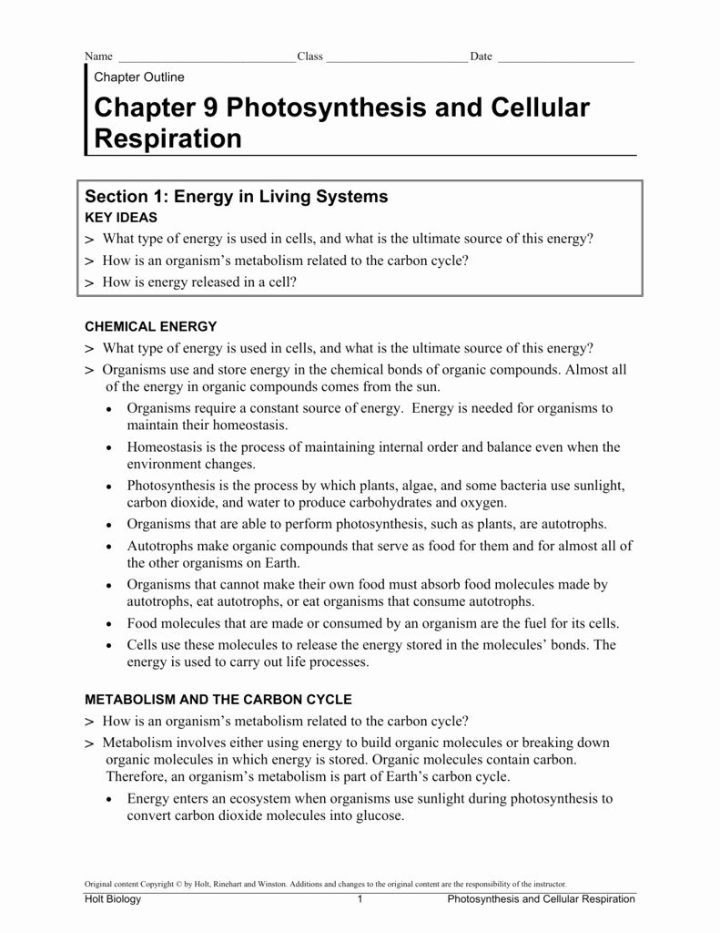 Cellular Respiration Worksheet Key Awesome Chapter 9 Synthesis and Cellular Respiration