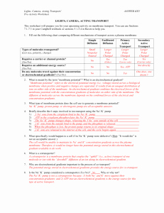 Cellular Transport Worksheet Answers Luxury Active Transport Section 5 2 Answer Sheet