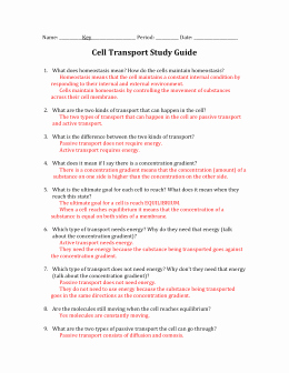 Cellular Transport Worksheet Answers Luxury Chapter 7 Section 4 Cellular Transport Study Guide Answers