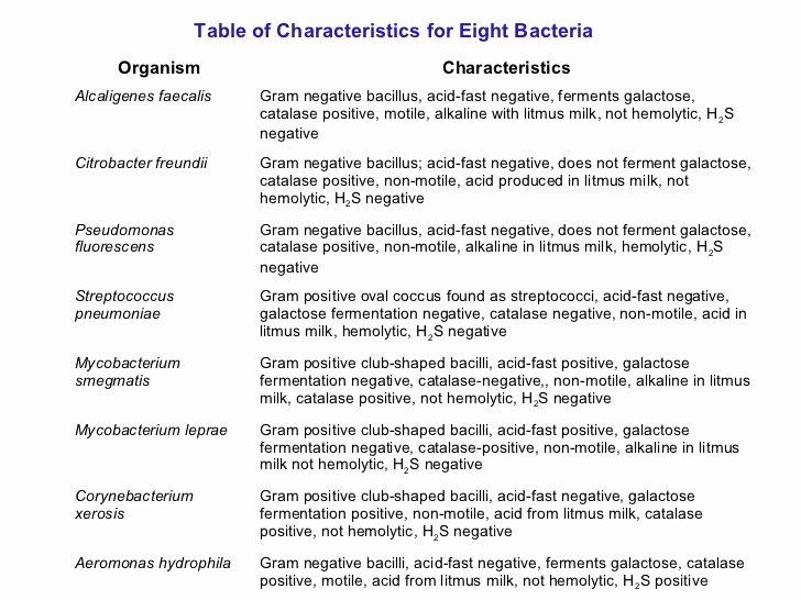 Characteristics Of Bacteria Worksheet Awesome Characteristics Bacteria Worksheet Answer Key the Best
