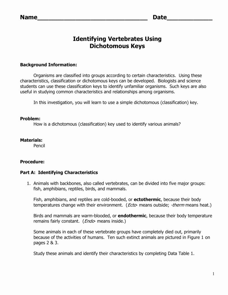 Characteristics Of Bacteria Worksheet Beautiful Classification Key