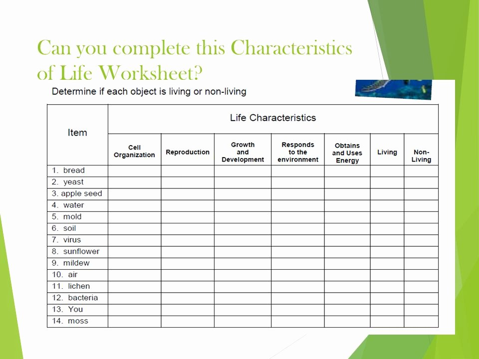 Characteristics Of Life Worksheet Answers Inspirational Characteristics Life Worksheet the Best Worksheets