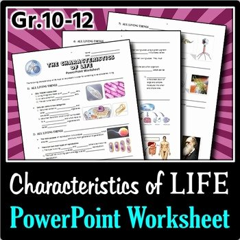 Characteristics Of Life Worksheet Answers Luxury the Characteristics Of Life Powerpoint Worksheet