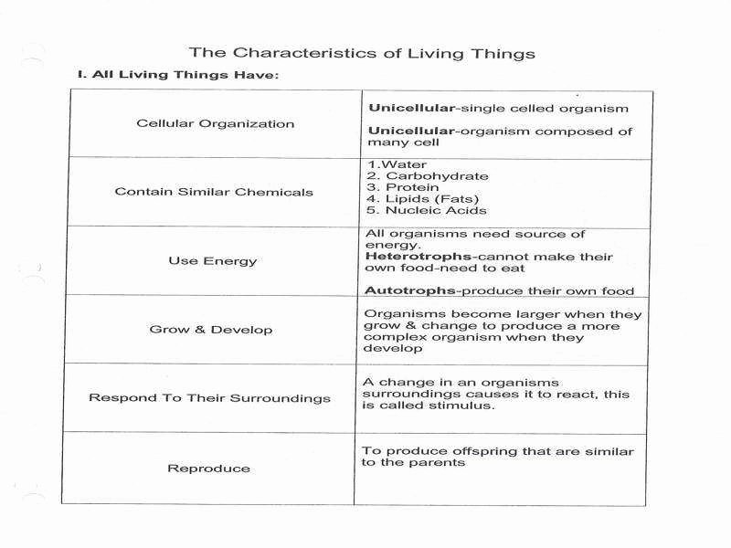 Characteristics Of Living Things Worksheet Elegant Characteristics Living Things Worksheet