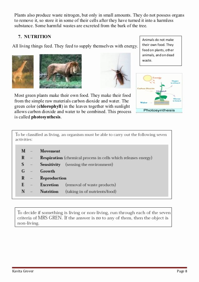Characteristics Of Living Things Worksheet Fresh Lesson Plan and Worksheets On Characteristics Of Living Lhings