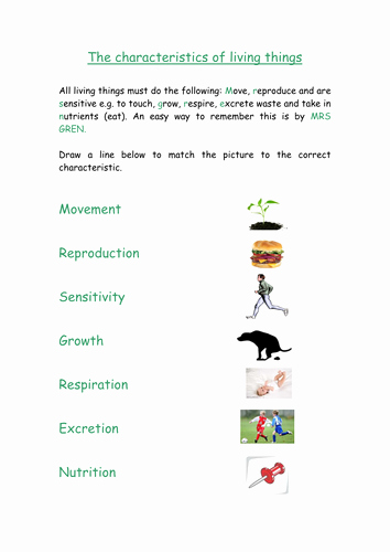 Characteristics Of Living Things Worksheet Lovely Biology Y7 Worksheet Characteristics Of Living Things