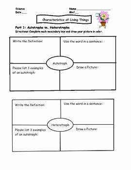 Characteristics Of Living Things Worksheet Luxury Characteristics Of Living Things Worksheet Homework by
