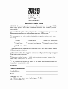 Checks and Balances Worksheet Answers Luxury the Checks and Balances System A Worksheet