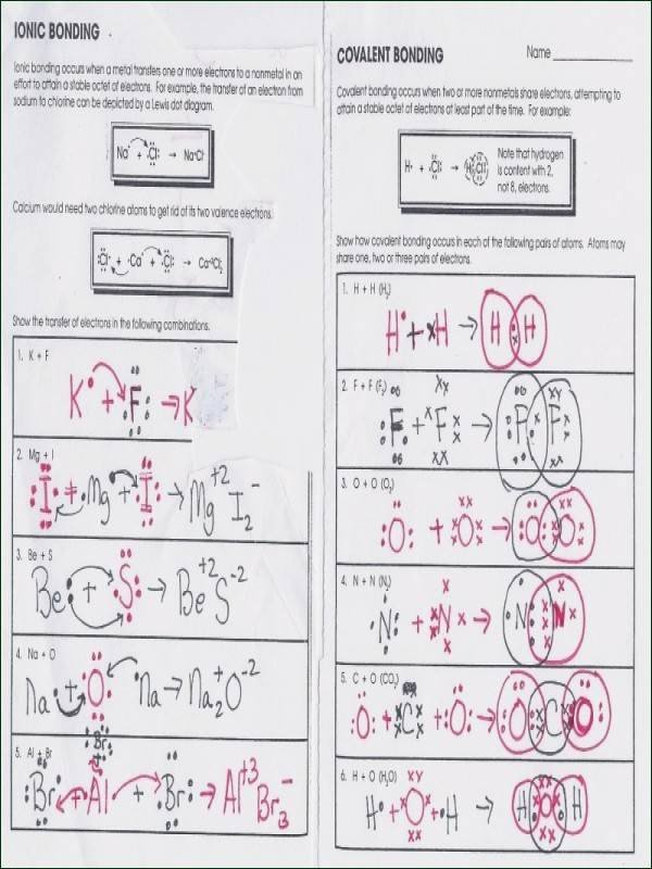 Chemical Bonding Worksheet Answer Key Elegant Phases the Cell Cycle Worksheet Answer Key