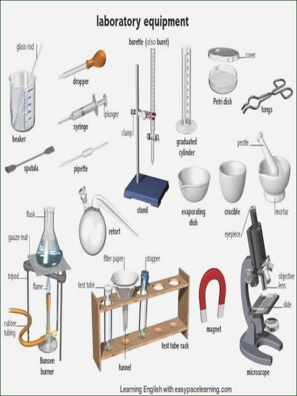 Chemistry Lab Equipment Worksheet Awesome Lab Equipment Worksheet