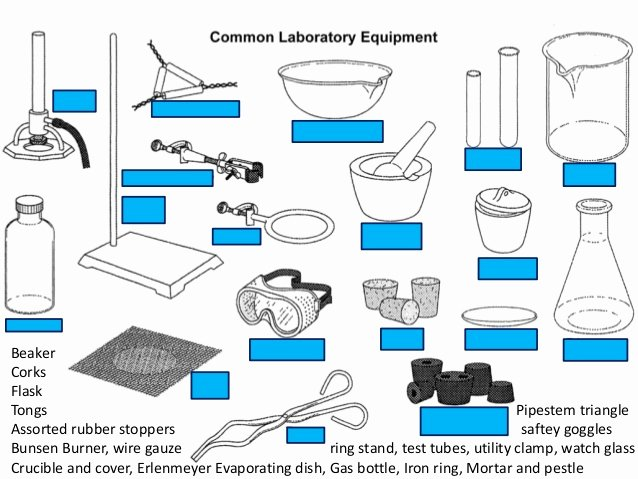 Chemistry Lab Equipment Worksheet Elegant Mon Laboratory Equipment Quiz