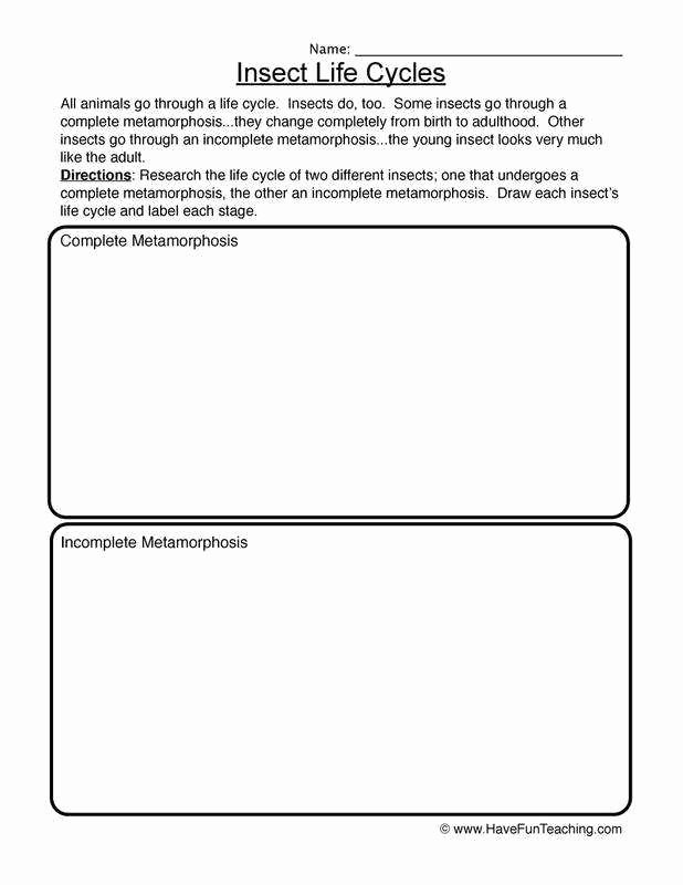 Chemistry Worksheet Matter 1 Answers Awesome Chemistry Worksheet Matter 1