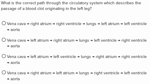 Circulatory System Worksheet Answers Awesome Circulatory System Questions Practice