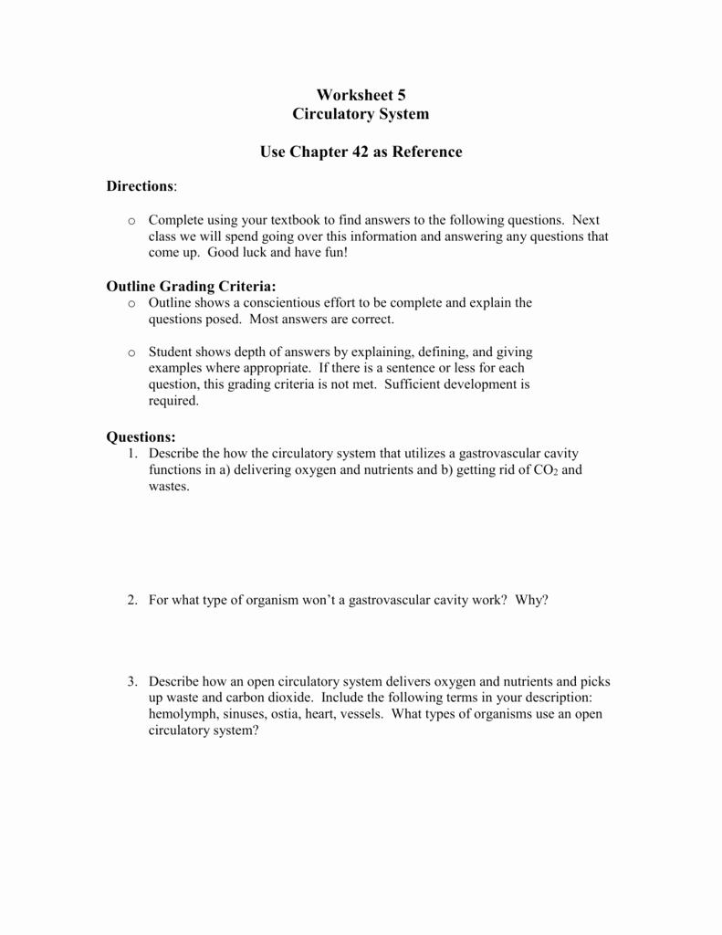 Circulatory System Worksheet Answers Elegant Worksheet Circulatory System