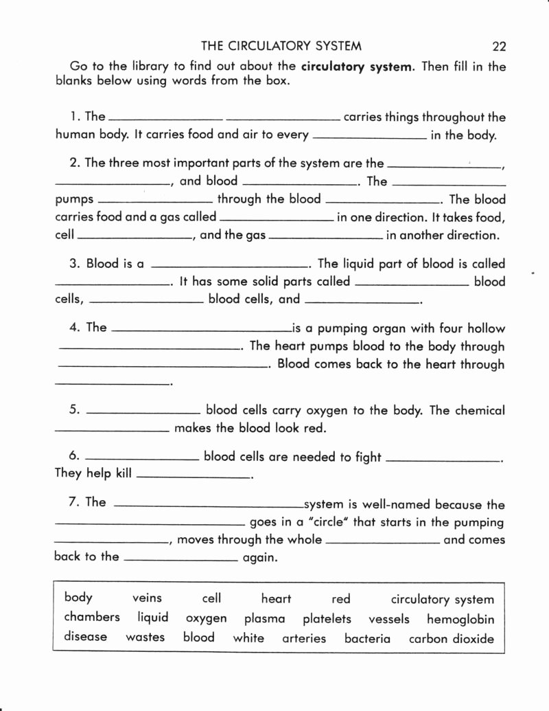 Circulatory System Worksheet Answers Luxury 14 Best Of Blank Fill In the Circulatory System