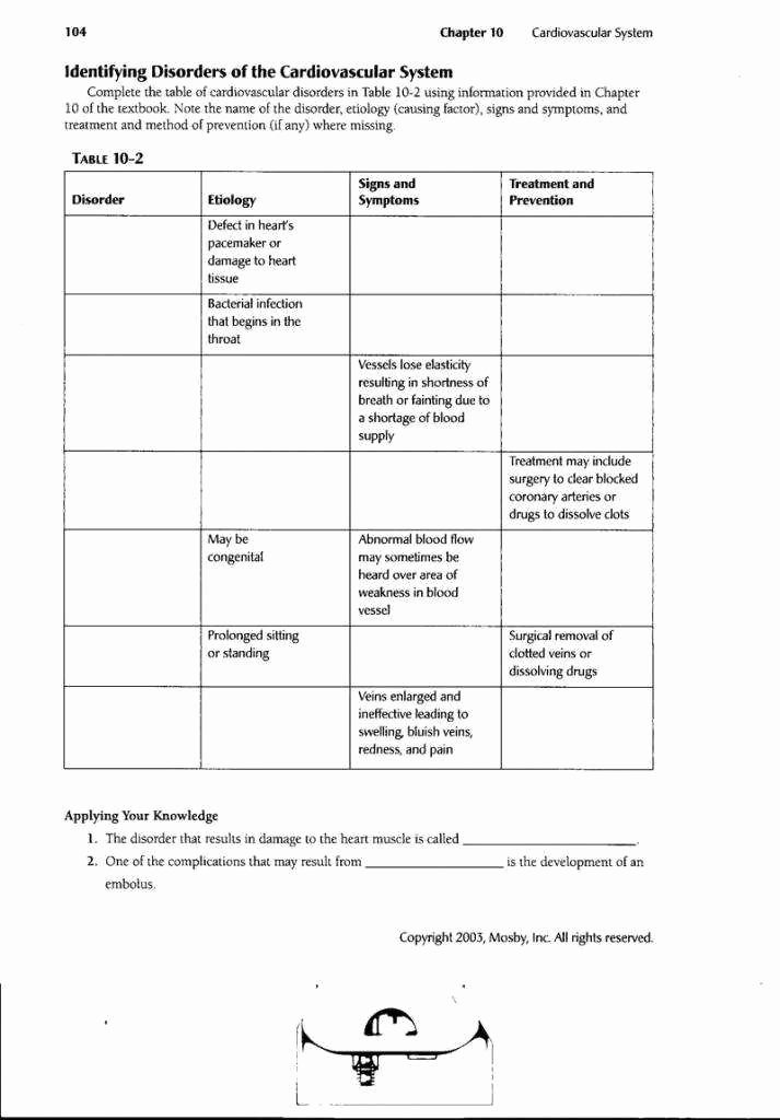 Circulatory System Worksheet Answers Luxury the Circulatory System Worksheet