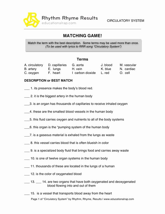 Circulatory System Worksheet Answers New Science Educational songs Free Worksheets and