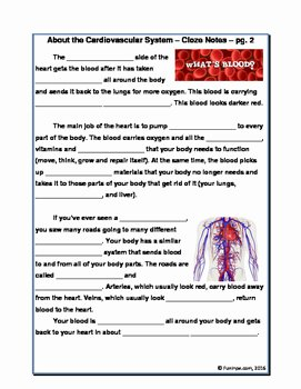 Circulatory System Worksheet Pdf Unique Cardiovascular Circulatory System Unit Worksheets