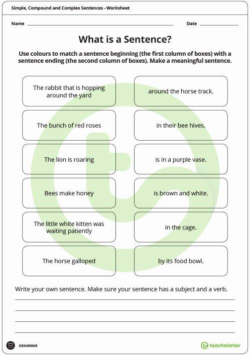 Compound and Complex Sentences Worksheet Luxury Simple Pound and Plex Sentences Worksheet Pack