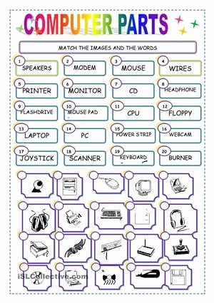 Computer Basics Worksheet Answer Key Fresh Match the Puter Parts Worksheet Free Esl Printable