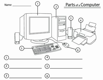 Computer Basics Worksheet Answer Key New Parts Of A Puter by Twisted Palette Illustrations