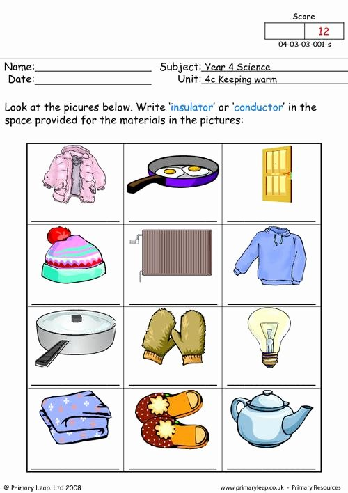 Conductors and Insulators Worksheet Inspirational Insulator or Conductor 1