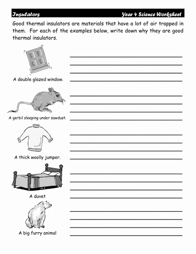 Conductors and Insulators Worksheet Inspirational thermal Insulators Worksheets by Dazayling