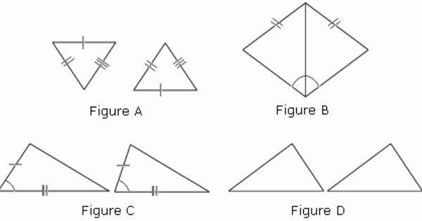 Congruent Triangles Worksheet with Answer Lovely Congruent Triangles Activity