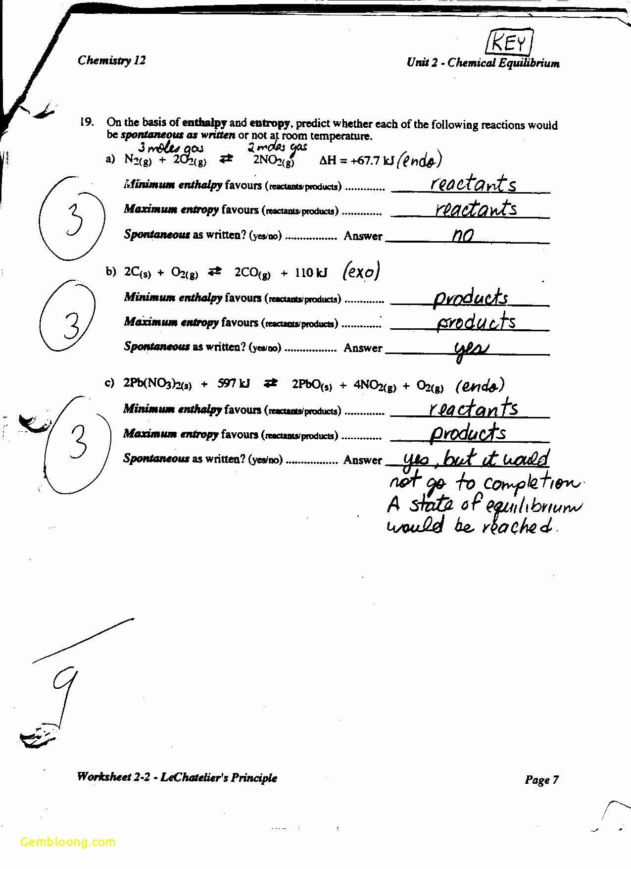 Constitutional Principles Worksheet Answers Awesome Constitutional Principles Worksheet Cramerforcongress