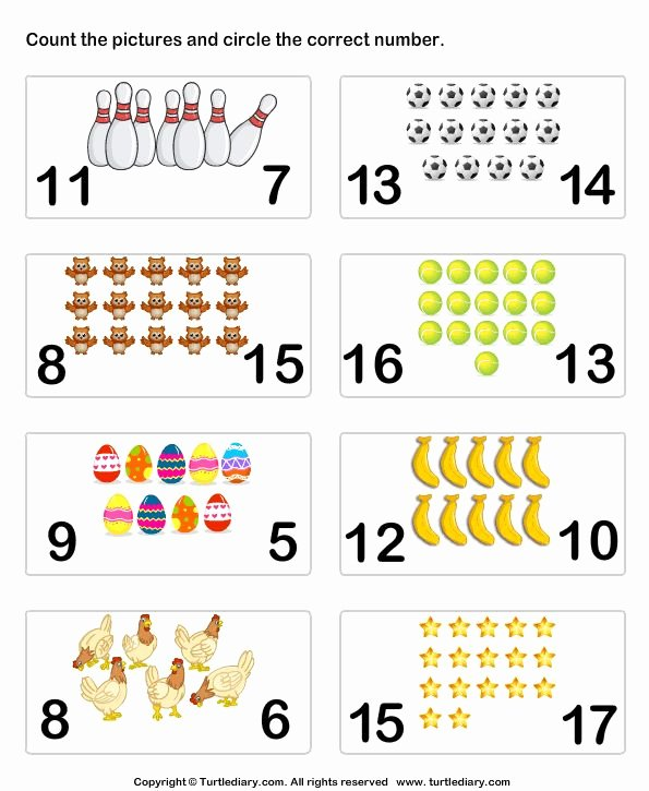 Counting to 20 Worksheet Awesome Count Pictures Turtlediary