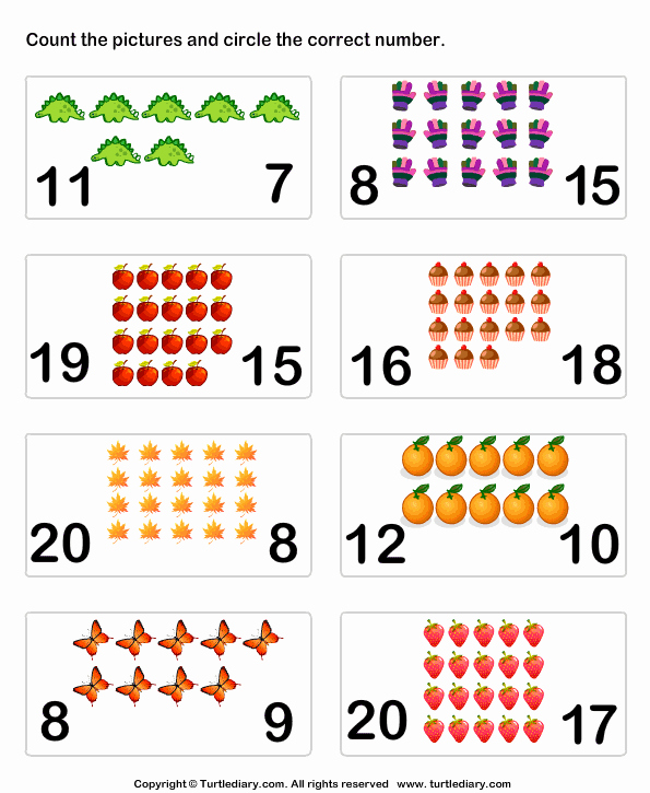 Counting to 20 Worksheet New Count Up to Twenty Worksheet Turtle Diary