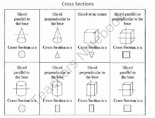 Cross Section Worksheet 7th Grade Lovely Geometry Study Guide 7th Grade Mon Core From Middle