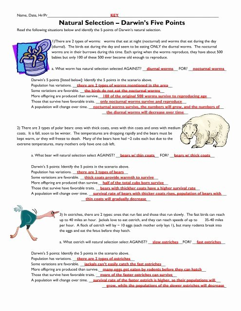 Darwin Natural Selection Worksheet Unique Printables Of Darwin S Natural Selection Worksheet Answers