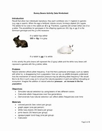 Darwin's Natural Selection Worksheet Answers Elegant Darwin Natural Selection Worksheet Classroom