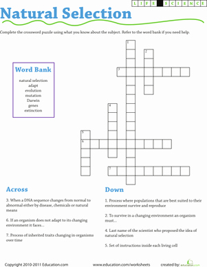 Darwin's Natural Selection Worksheet Answers Lovely Life Science Crossword Natural Selection
