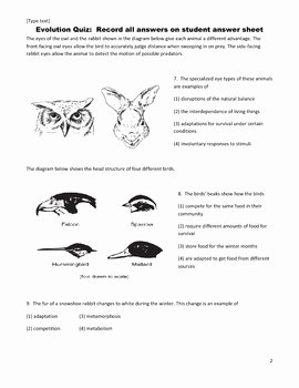 Darwin's Natural Selection Worksheet Answers Lovely Middle School Science Quiz Evolution Natural Selection