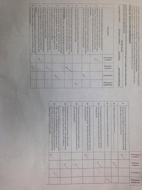 "Darwin's Natural Selection Worksheet Answers New Ms Perling On Twitter ""types Of Evolution Worksheet"