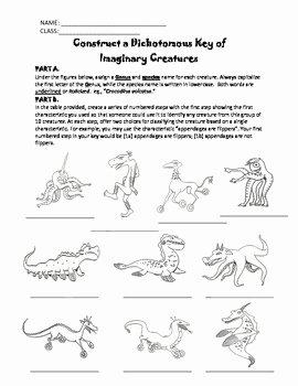 Dichotomous Key Worksheet Pdf New Construct A Dichotomous Key Of Weird Wacky Creatures